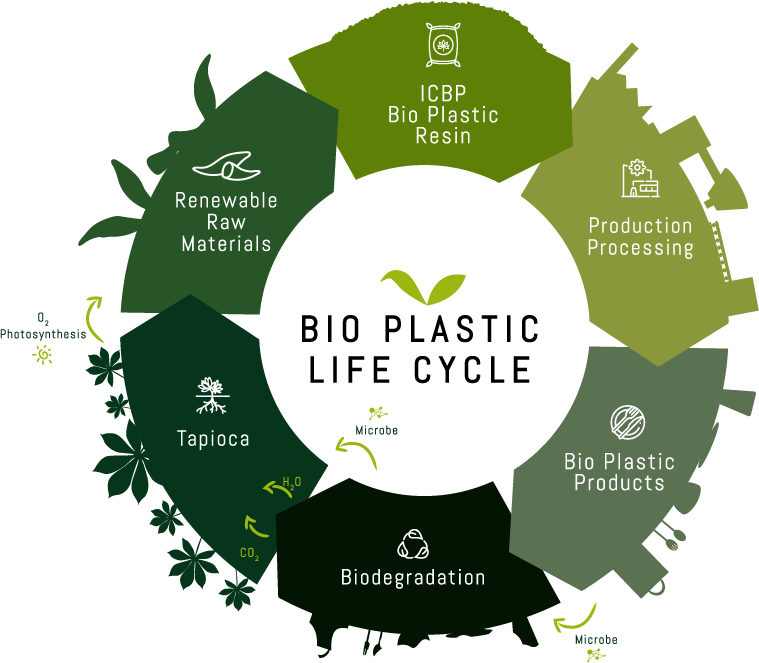 bioplastic lifecycle